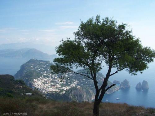 Mount Solaro   Ana Capri Italy