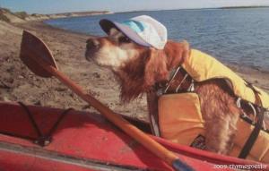 Jackson's kayaking days