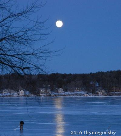 Reflecting on Winter -- Winter Moon