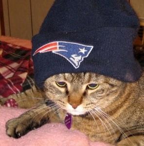 Super Bowl Champs 2015         Boston Patriots